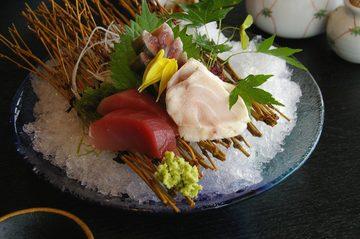徳造丸 魚庵